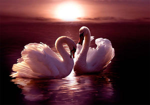 Swans in the Moonlight DIY Diamond Painting Kit