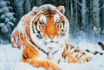 Load image into Gallery viewer, Tiger in the Snow DIY Diamond Painting Kit