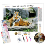 Load image into Gallery viewer, Tigers at the Zoo DIY Diamond Painting Kit