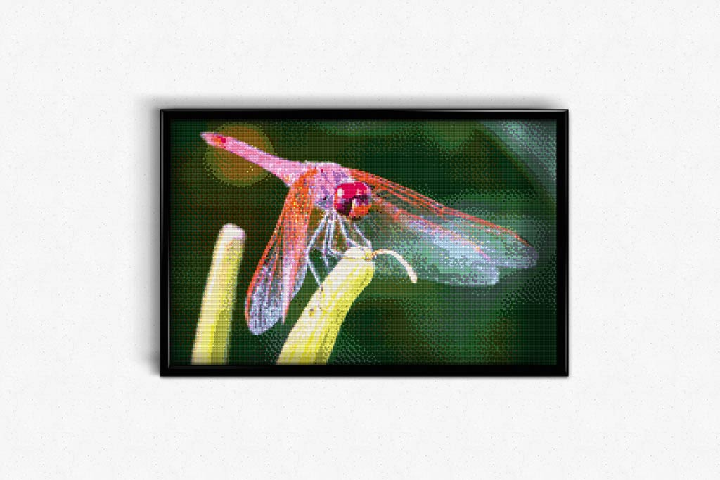 Trithemis DIY Diamond Painting Kit