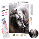 Load image into Gallery viewer, White Mare with a Beautiful Bridle DIY Diamond Painting Kit