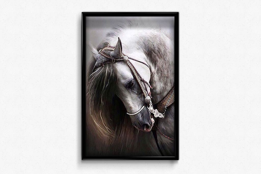 White Mare with a Beautiful Bridle DIY Diamond Painting Kit