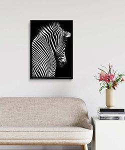 Zebra Goes into the Darkness DIY Diamond Painting Kit