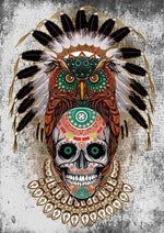 Load image into Gallery viewer, Skull with Owl DIY Diamond Painting Kit