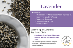 Jayida Che Herbal Tea Spot French Lavender (Organic)