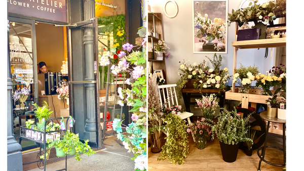 darling moon flower shop