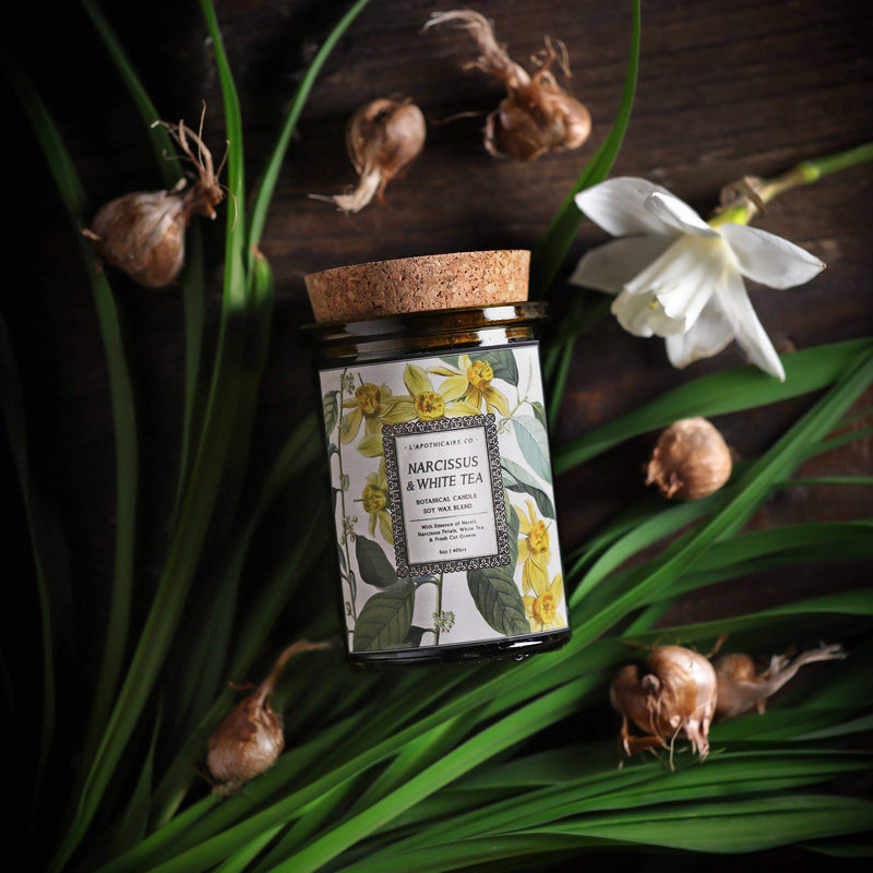 L'apothicaire Co. - BOTANICA | Narcissus + White Tea | Candle