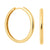 Simple Hinge Hoops in Gold