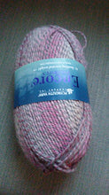 Load image into Gallery viewer, Plymouth Encore Colorspun #612