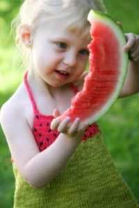 Never Not Knitting - Watermelon by Alana Dakos