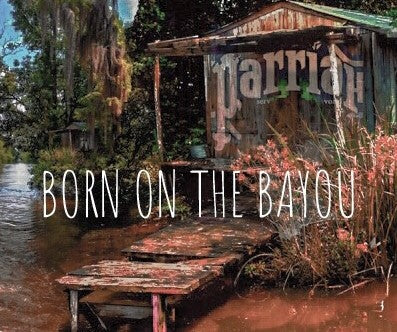 ParriaH-Born on the Bayou (cover) - SIGHT & SOUND Custom Design