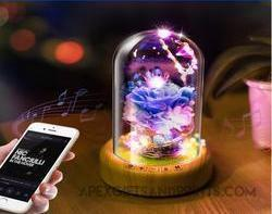 Customised Dreamer Glass Dome Speaker ,  corporate gifts
