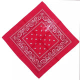 Red Paisley Bandana - 420 Mile High