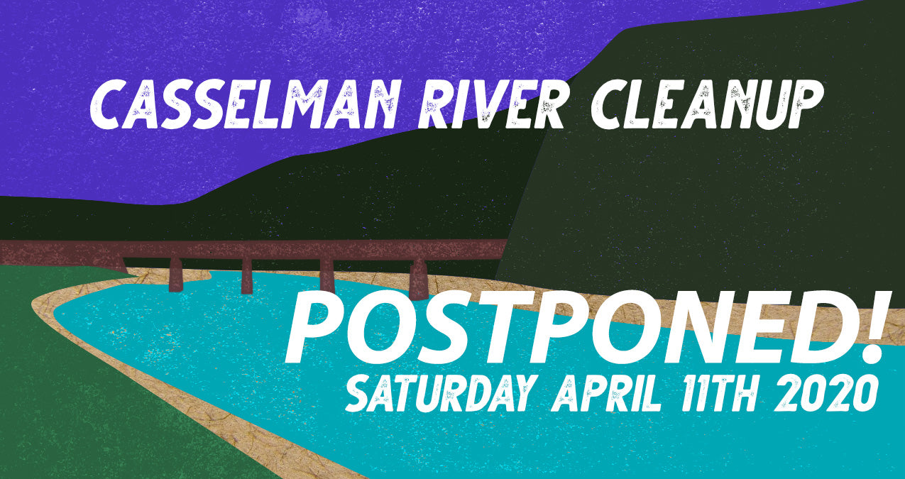 Casselman River Cleanup