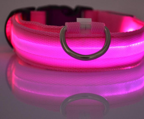 LED Glow In The Dark Pet Collar