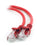 Cablexpert Straight Through Network Cable - 2 Metre in Red - CB-NET2/RED