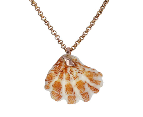 Gold Shark Fin Shell Pendant Necklace
