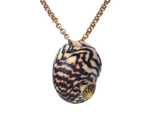 Gold Shark Fin Turbo Shell Pendant ONLY - TWISTonline
