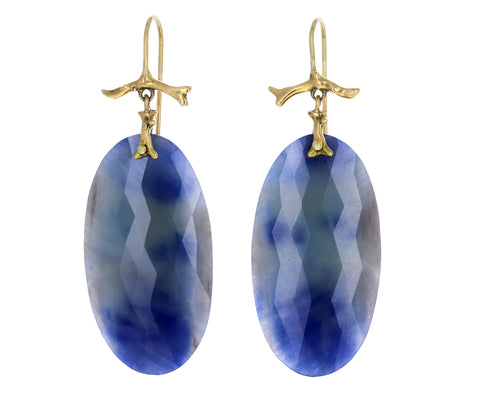 Blue Sapphire Slice Branch Earrings