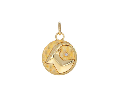Capricorn Zodiac Baby Medallion ONLY