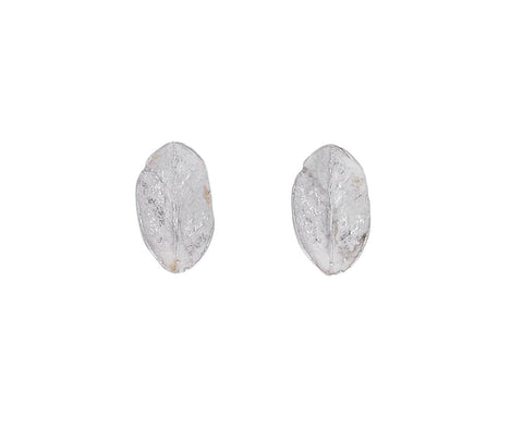 Silver Boxwood Leaf Post Earrings