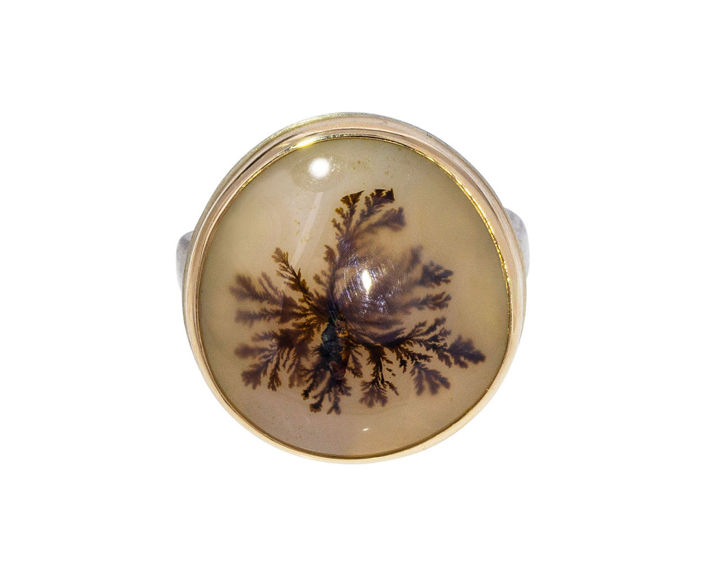 Dendritic Agate Ring– TWISTonline