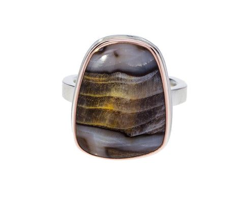 Fossilized Channel Wood Ring - TWISTonline