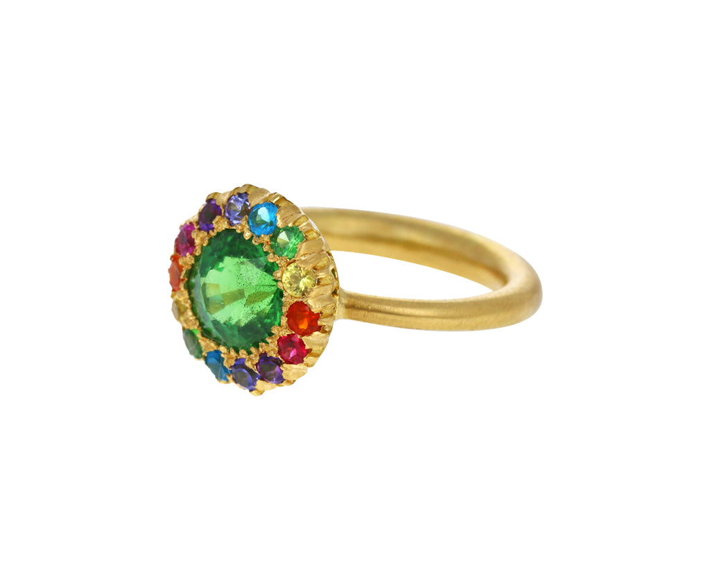 Tsavorite Garnet and Multi Gem Princess D Marguerite Ring