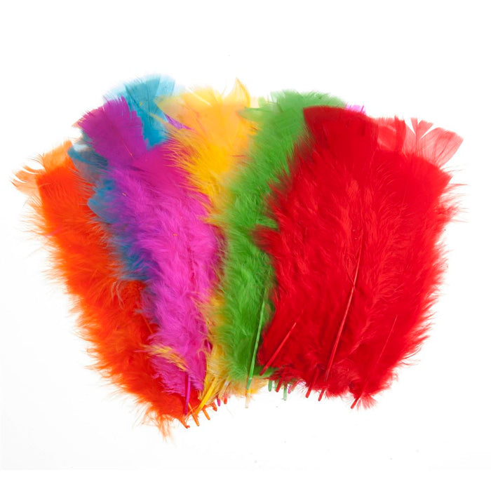 Feathers: Assorted Large: 50
