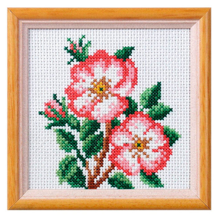 Cross Stitch: Dog Rose