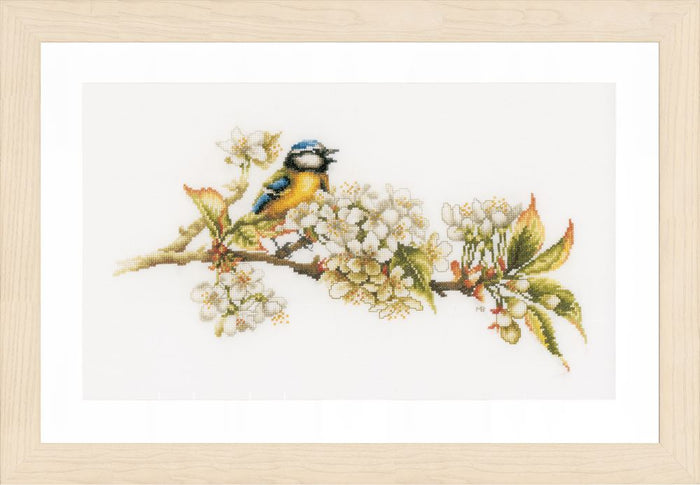 Counted Cross Stitch Kit: Blue Tit: (Aida)