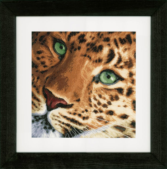 Counted Cross Stitch Kit: Leopard: (Aida)