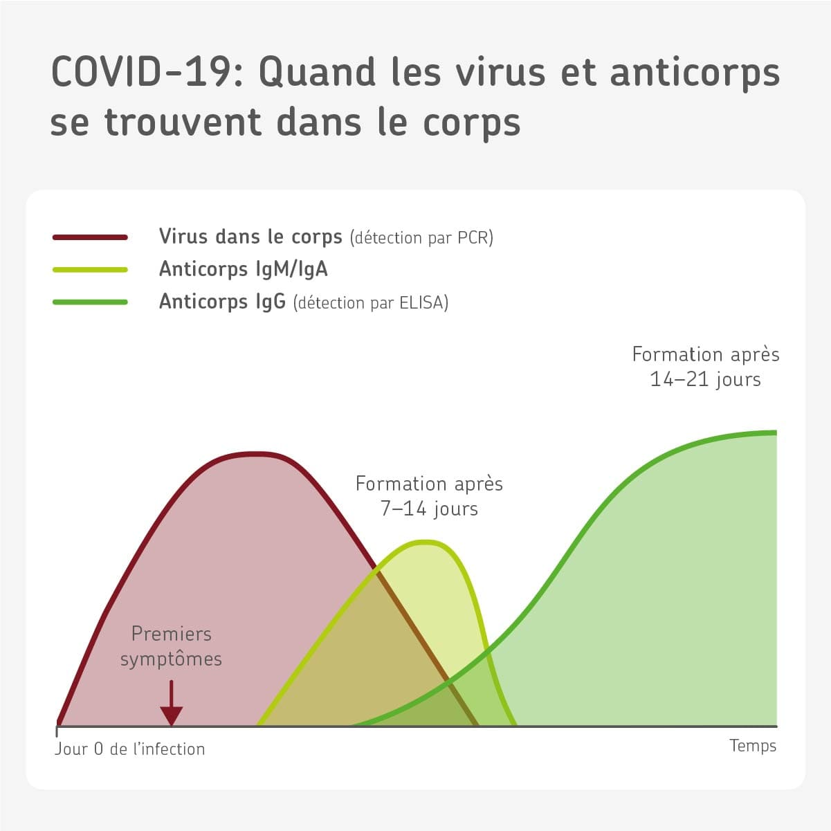 Test sérologique anticorps virus SARS-CoV-2