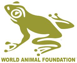 Round Up for World Animal Foundation
