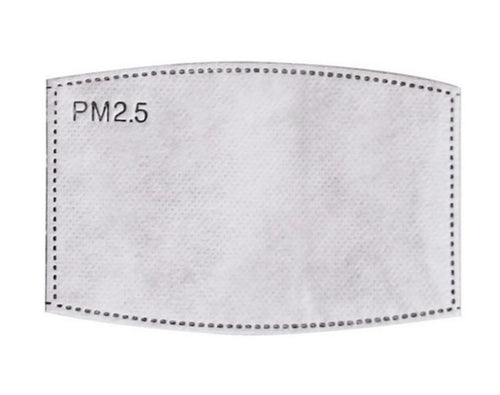 PM 2.5 Activated Carbon Replacement Filters (10 count)