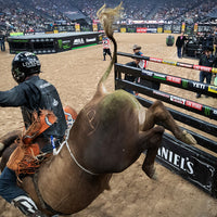 A photo of a professional bull rider