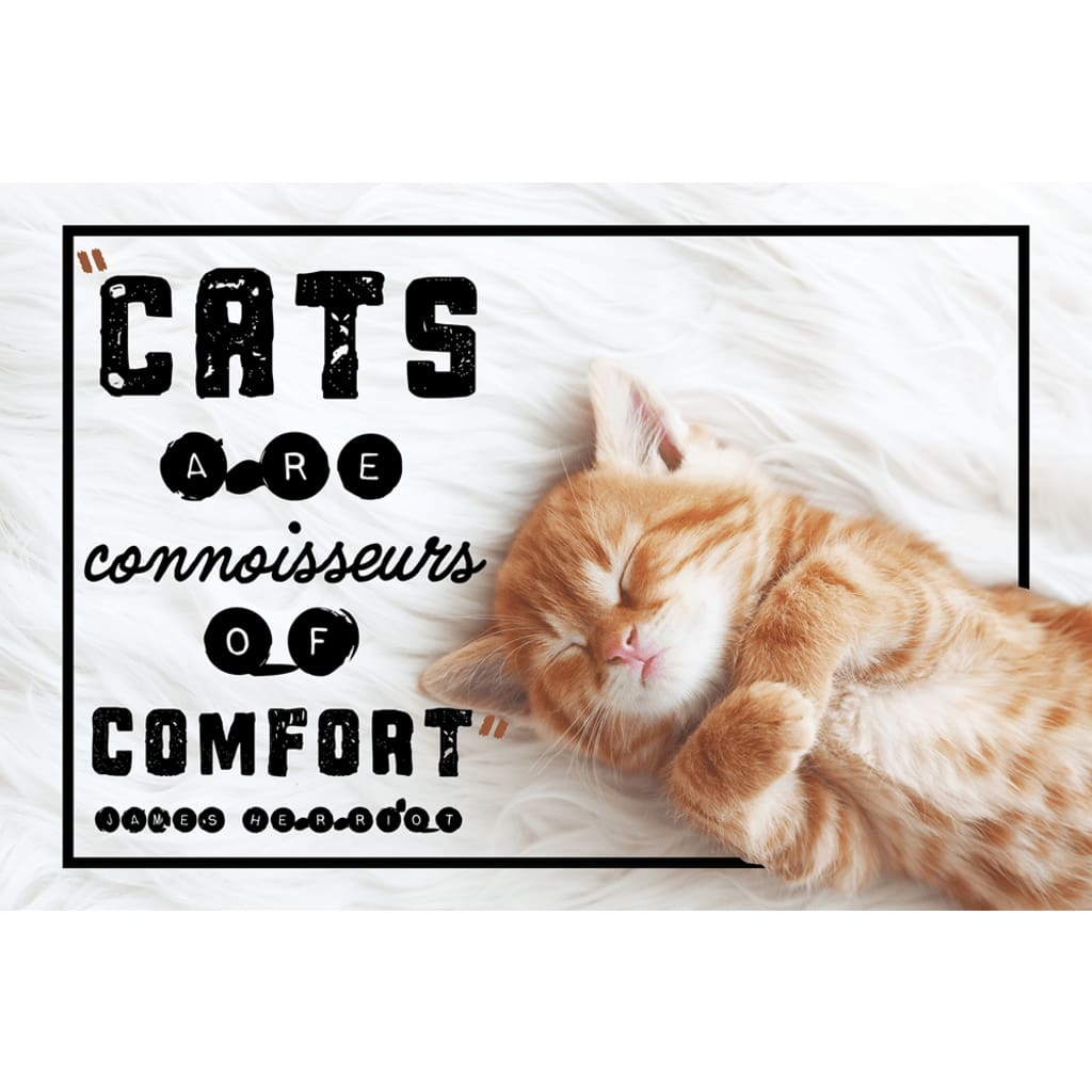 Cats are connoisseurs of comfort - Cute Kitten - Professional Photo Print - 6x9 inch