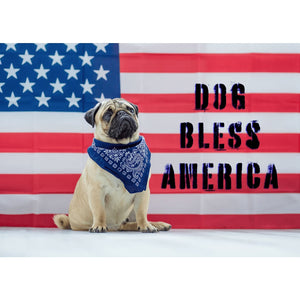 Dog Bless America Cute Pug USA Flag - Professional Photo Print - 5x7 inch