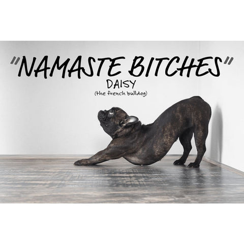 Image of Namaste Bitches - Lazy Yoga Dog Downward Dog - Professional Photo Print - 6x9 inch