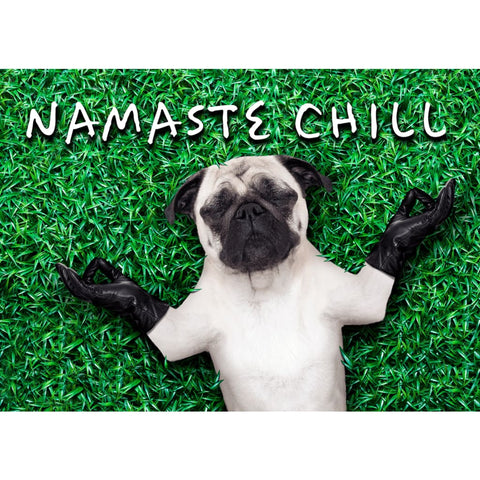 Image of Namaste Chill Lazy Yoga Dog - Professional Photo Print - 5x7 inch