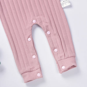 Learning to Fly - Onesie (Grey or Pink)