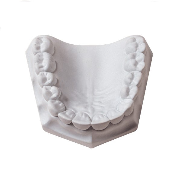 Orthodontic Super-White Dental Stone