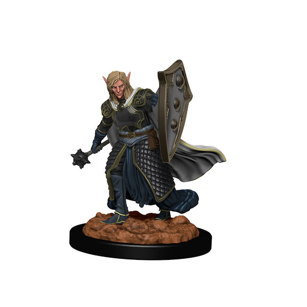 DND IotR Premium Figures : W2 Elf Male Cleric