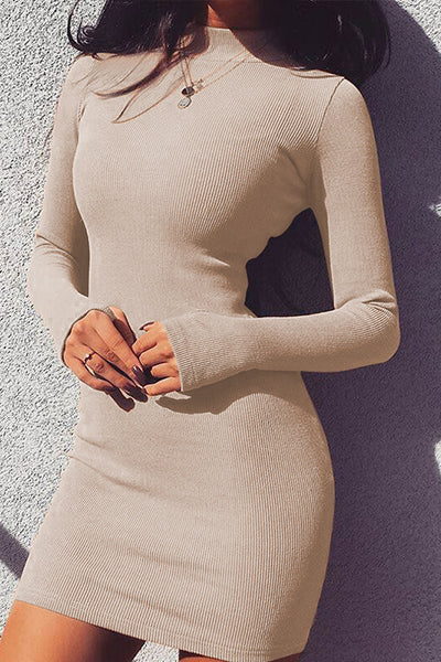 Casual Solid Long Sleeve Close-fitting Dress