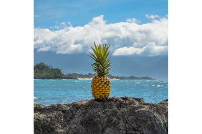 For all You Pineapple Lovers - Paia