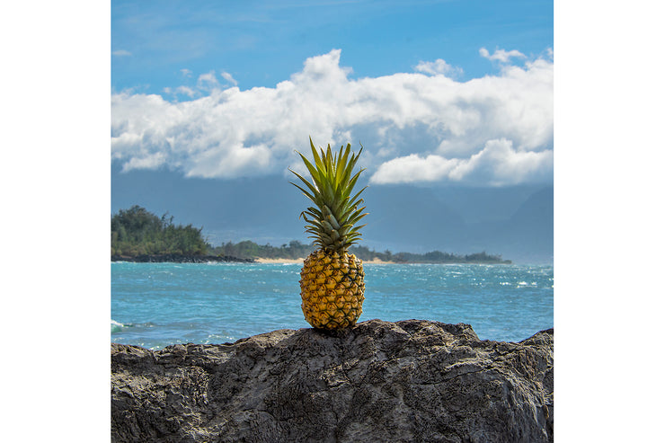 For all You Pineapple Lovers
