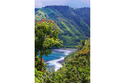 Heavenly Hana, Maui Hawaii, Road to Hana, Color Me Maui