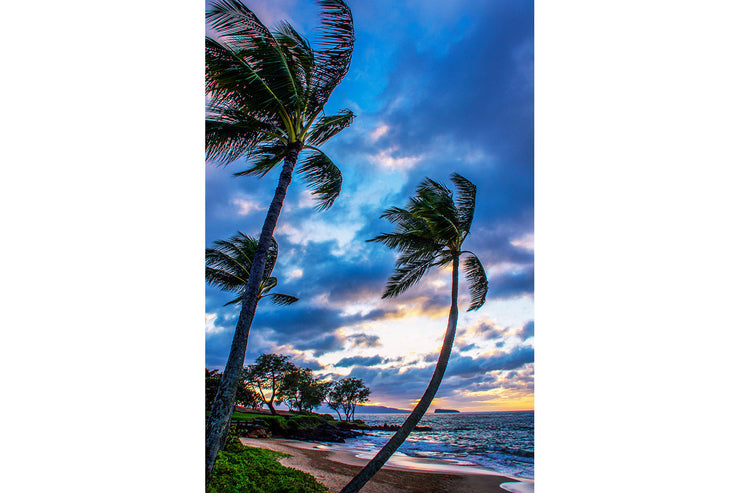 Love at First Sight, Maluaki Beach Maui Hawaii, Color me Maui