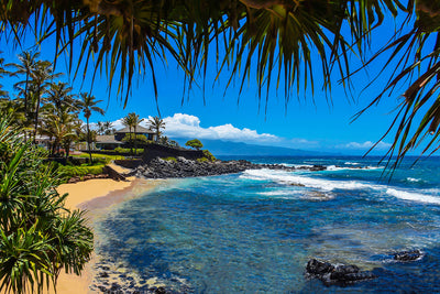 Dining at Mama's Fish House, Maui Hawaii, Color me Maui