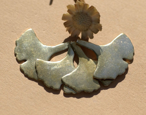 Buy Brass Blank Ginkgo Biloba Leaf - Leaves - Fall Greenery Cutout for Metalworking Shape Charm Blanks online